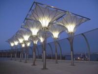 Canopy Designs Lighting | Lighting Ideas
