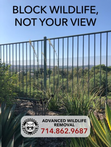 view of wildlife exclusion fence that blocks wildlife from entering a garden while preserving the homeowner's beautiful view. installed by Advanced Wildlife Removal.