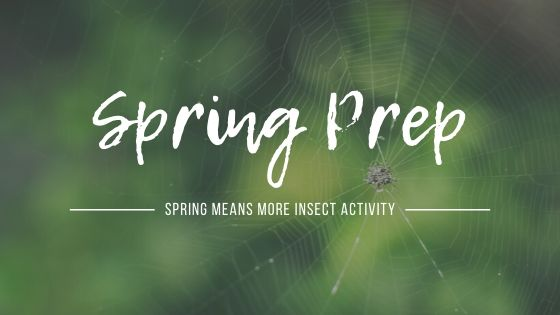 Spring Prep Guide – Pest Control