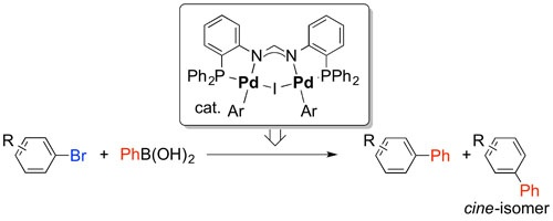 Formation of cine-Substitution Products in the Suzuki