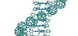 Fullerene-porphyrin supramolecular nanocables.