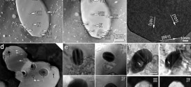 Multiple twins of a decagonal approximant embedded in S-Al2CuMg phase resulting in pitting initiation of a 2024Al alloy