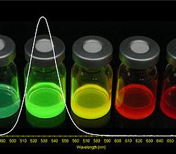 Temperature dependence fundamental excitonic resonance in lead-salt quantum dots