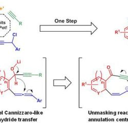 One-Pot Cannizzaro Cascade Synthesis of ortho-Fused Cycloocta-2,5-dien-1-ones from 2-Bromo(hetero)aryl Aldehydes