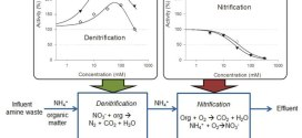 Inhibition factors in biofilm N removal systems treating wastes generated by amine based CO2 capture. Advances in Engineering