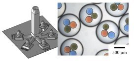 Microfluidic devices fabricated using stereolithography for preparation of monodisperse double emulsions. Advances in Engineering