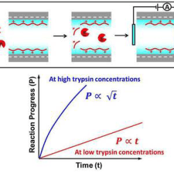 Label-Free Electrical Detection of Enzymatic Reactions in Nanochannels-advances in engineering