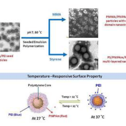 Synthesis of Dual Stimuli-Responsive Amphiphilic Particles through Controlled Semi-batch Emulsion Polymerization-Advances in Engineering