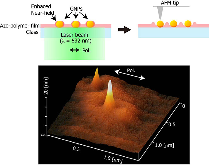 Near-field optical mapping of single gold nanoparticles using photoinduced polymer movement of azo-polymers-Advances in Engineering