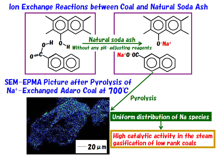 Steam Gasification of Low-Rank Coals with Ion-Exchanged Sodium Catalysts Prepared Using Natural Soda Ash-Advances in Engineering