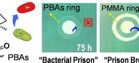 Antibacterial Adhesion of Borneol-Based Polymer via Surface Chiral-Advances in Engineering