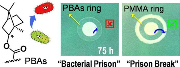Antibacterial Adhesion of Borneol-Based Polymer via Surface Chiral Stereochemistry-Advances in Engineering