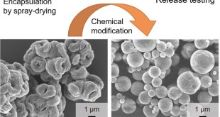 chemically modified inulin as encapsulation material for pharmaceutical substances by spray-drying-Advances in Engineering