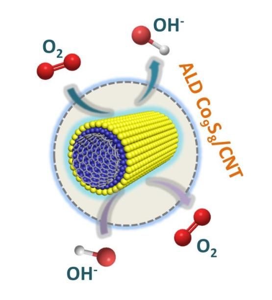 Atomic-layer-deposited ultrathin Co9S8 on carbon nanotubes an efficient bi-functional electro-catalyst for oxygen evolution reduction reactions rechargeable Zn–air batteries