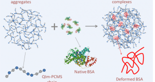 Tuning the solution organization of cationic polymers through interactions with bovine serum albumin- Advances in Engineering