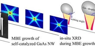 Radial Growth of Self-Catalyzed GaAs Nanowires. Advances in Engineering