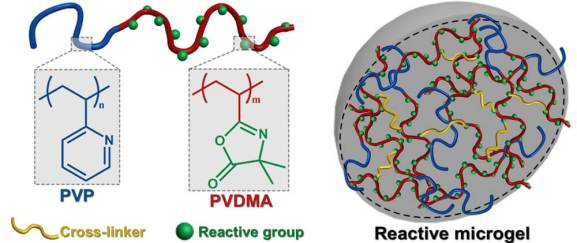 Reactive Microgels: Small but Smart Soft Materials - Advanced Engineering