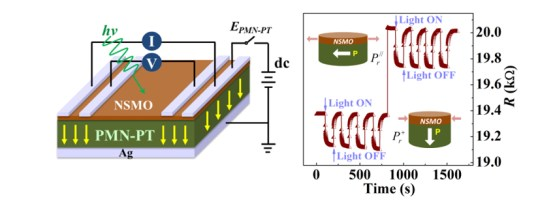 Manganite-based multiferroic heterostructure towards an intriguing platform for resistive switching memory devices with light-sensing capability, Advances in Engineering