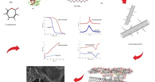 A Chemoenzymatic Approach to Prepare Nanocomposites from Polyester Urethanes and Functionalized Multiwalled Carbon Nanotubes - Advances in Engineering