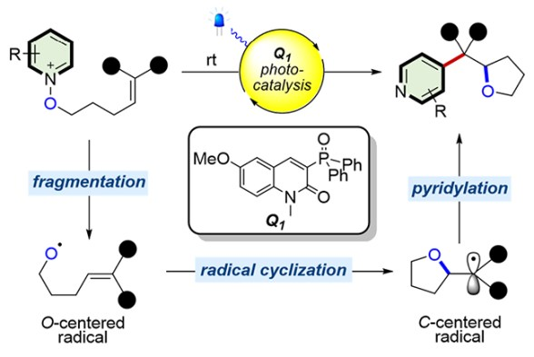 Visible-Light-Induced Cascade Radical Ring-Closure and Pyridylation for the Synthesis of Tetrahydrofurans - Advances in Engineering