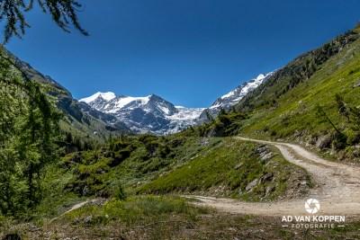 Landschapsfoto van een bergpad tussen de groene berghellingen in het Turtmanntal in Wallis Zwitserland met op de achtergrond de besneeuwde bergtoppen onder een strak blauwe lucht.