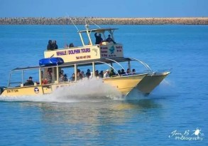 Harbour Cruise Richards Bay