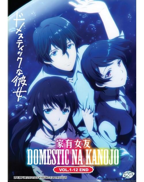 DOMESTIC NA KANOJO VOL. 1-12 END dvd