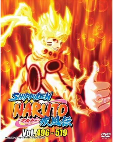 NARUTO (TV 496-519 ) BOX 16 DVD