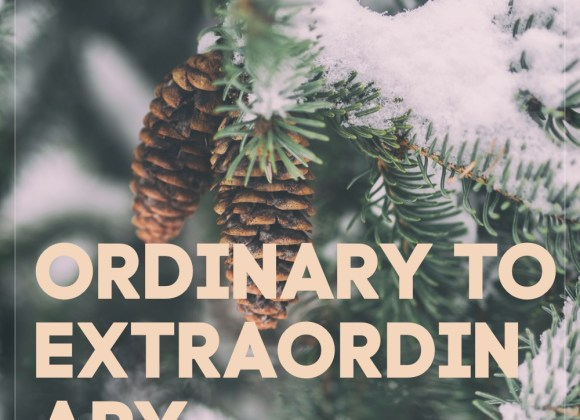 #14 Ordinary to Extraordinary
