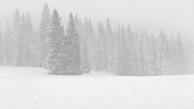 Winter on the Mesa