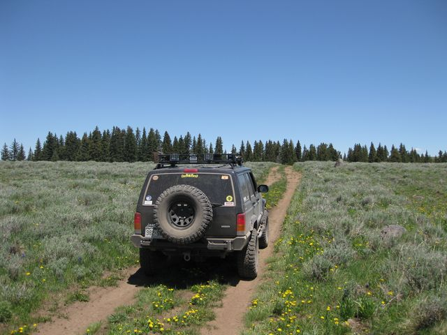 Lunch on Grand Mesa