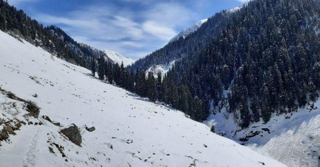 marchoi_kashmir winter trek _Adventure-pulse_marchoi valley