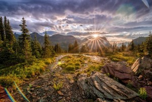 Is Corporate Sponsorship the Answer for America's National Parks?