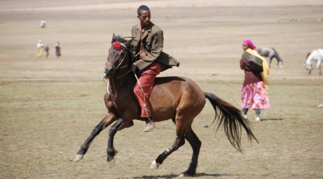 An Oromo man displays his horsemanship in the Bale Mountains region, Southern Ethiopia Image – Sam McManus