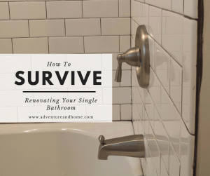 Bathroom Renovating how to easily survive renovating your single bathroom - adventure