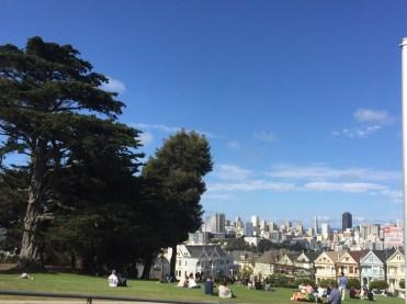 San Fran 20