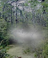 lightning gas haunt