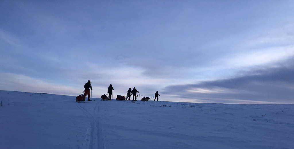 Cross-country skiers on the horizon
