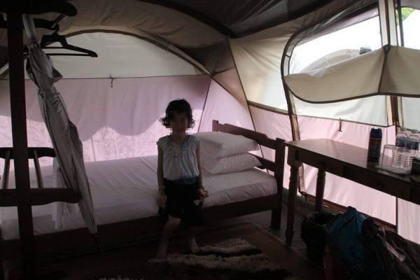 テントの写真