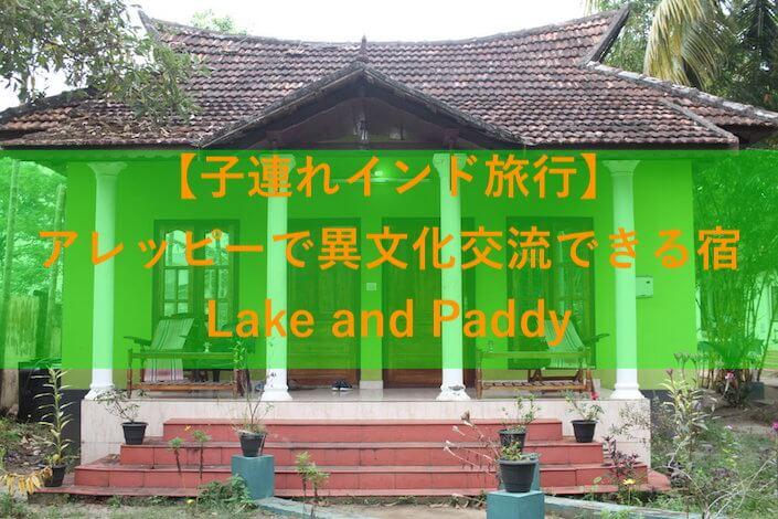 Lake and Paddyのアイキャッチ画像