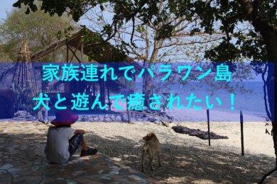 ジャングルビーチリゾートアイキャッチ画像
