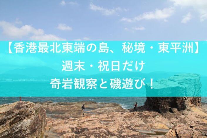 東平洲アイキャッチ画像