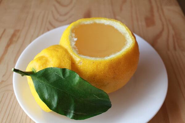 三宝柑の葉の部分の写真