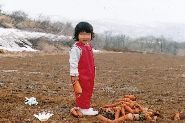 雪下人参を掘る写真