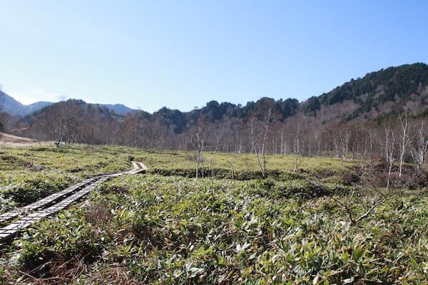 田ノ原湿原の木道の写真