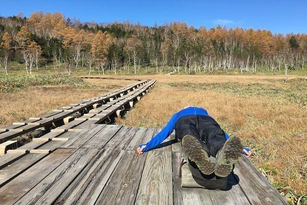 田ノ原湿原でゴロンと寝ている写真