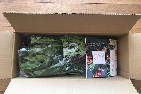 箱の中に入っている野菜の写真