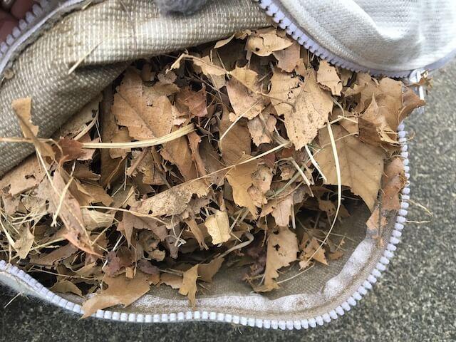 落ち葉やどんぐりを粉砕した写真