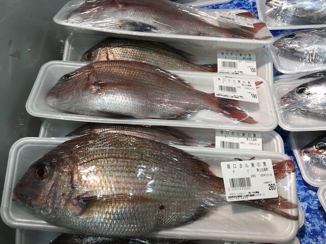 カミティの鮮魚コーナーの写真
