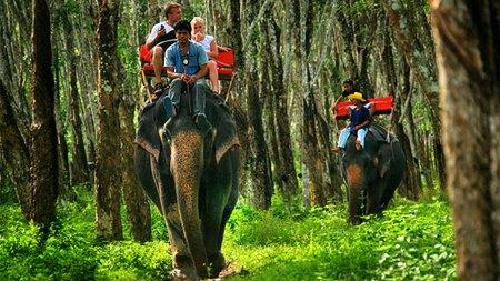 elephant-trekking-p2-5
